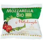 Økologisk Mozzarella