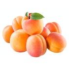 Ferske Aprikoser