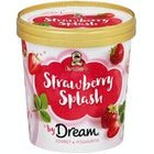 Dream Strawberry Splash
