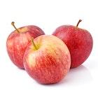 Røde Epler Gala 2-3 stk