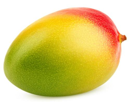 Mango Halvmoden, Keitt/Kent. Brasil/Peru, 1 stk