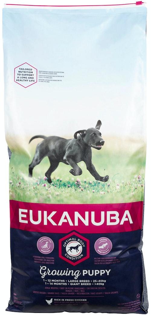 Eukanuba Growing Puppy Large Breed Rich In Fresh Chicken, 12 kg