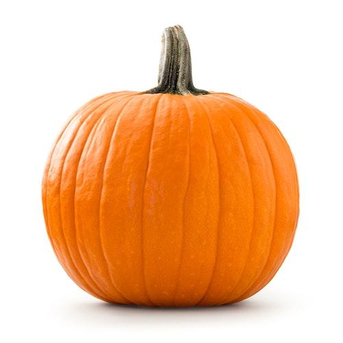 Gresskar/ Halloween Norge/Danmark, 4,5 kg