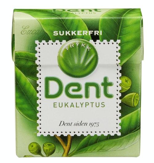 Dent Dent Eukalyptus 24 g