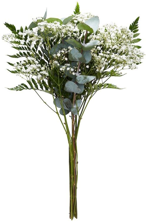 FreshFlowers Grøntmix Bukett Lederløv, Eucalyptus og Brudeslør (45 cm), 1 stk