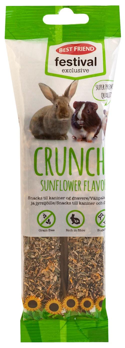 Best Friend Crunchy Frøstenger til Gnagere 2 stk, 120 g