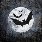 Servietter Halloween Moon And Bats
