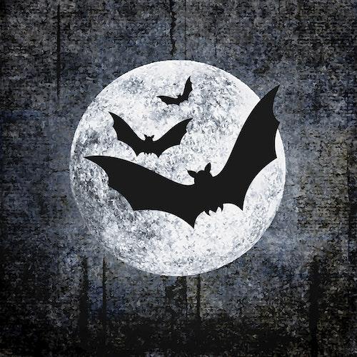 Duni Servietter Halloween Moon And Bats 3 lag, 33x33cm, 20 stk