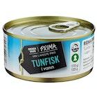 Tunfisk i Vann