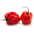 Habanero Rød