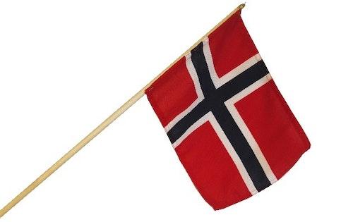 Skoleflagget 20cm x 27,5cm, 65cm stang, 1 stk