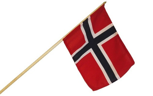 Barnehageflagget 15cm x 20,6cm, 55cm stang, 1 stk