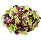 Salatmix Isberg og Radiccio