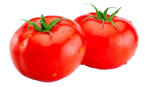 Tomat, Økologisk, 2/3 pk Holland, 225 g