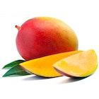 Stor Mango