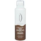 Brunettes Dry Shampoo