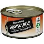 Tunfisk i Gele