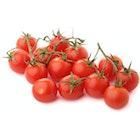 Økologiske Cherrytomater