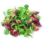 Salatblanding Premium